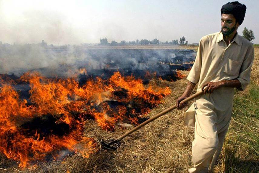Stubble burning contributes extreme levels of air pollution